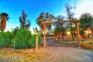 Property for sale at 50039 W Mockingbird Lane, Maricopa,  Arizona 85139