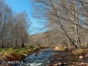 Creek Views