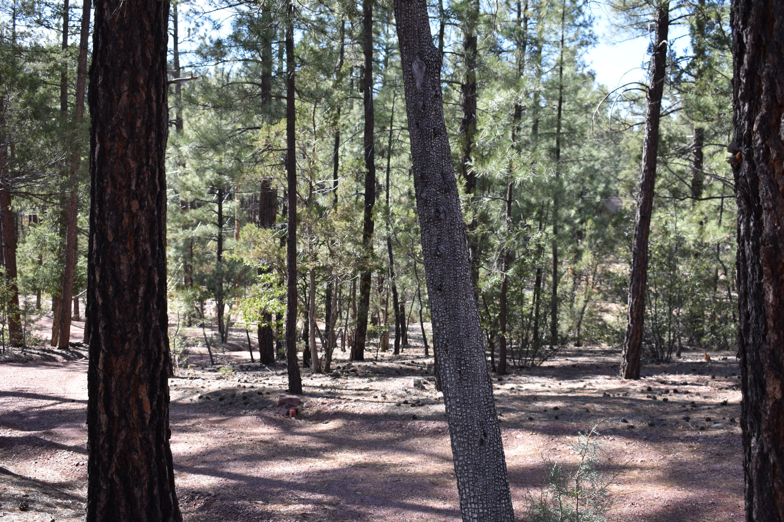 MLS 5743727 475 N COYOTE Trail, Payson, AZ Payson AZ Gated