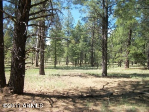 0 (Lot 3T)  Coconino Forest Rd 867 -- Flagstaff, AZ 86001