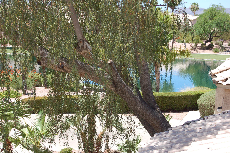MLS 5750935 1918 E TODD Drive, Tempe, AZ 85283 Tempe AZ Oasis At Anozira
