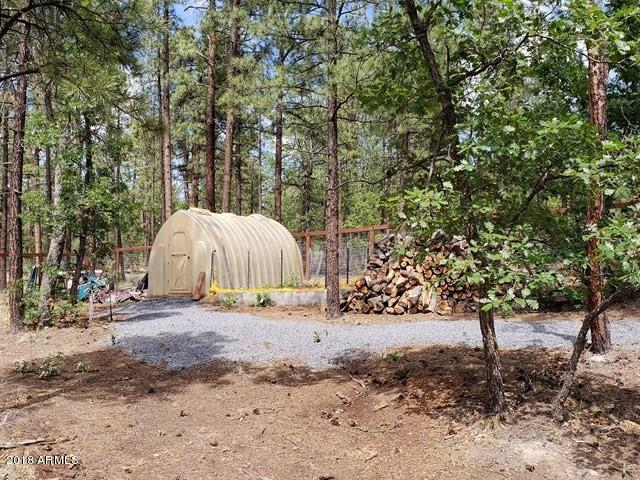 MLS 5791511 2742 PINE WOOD Lane, Pinetop, AZ Pinetop AZ Equestrian