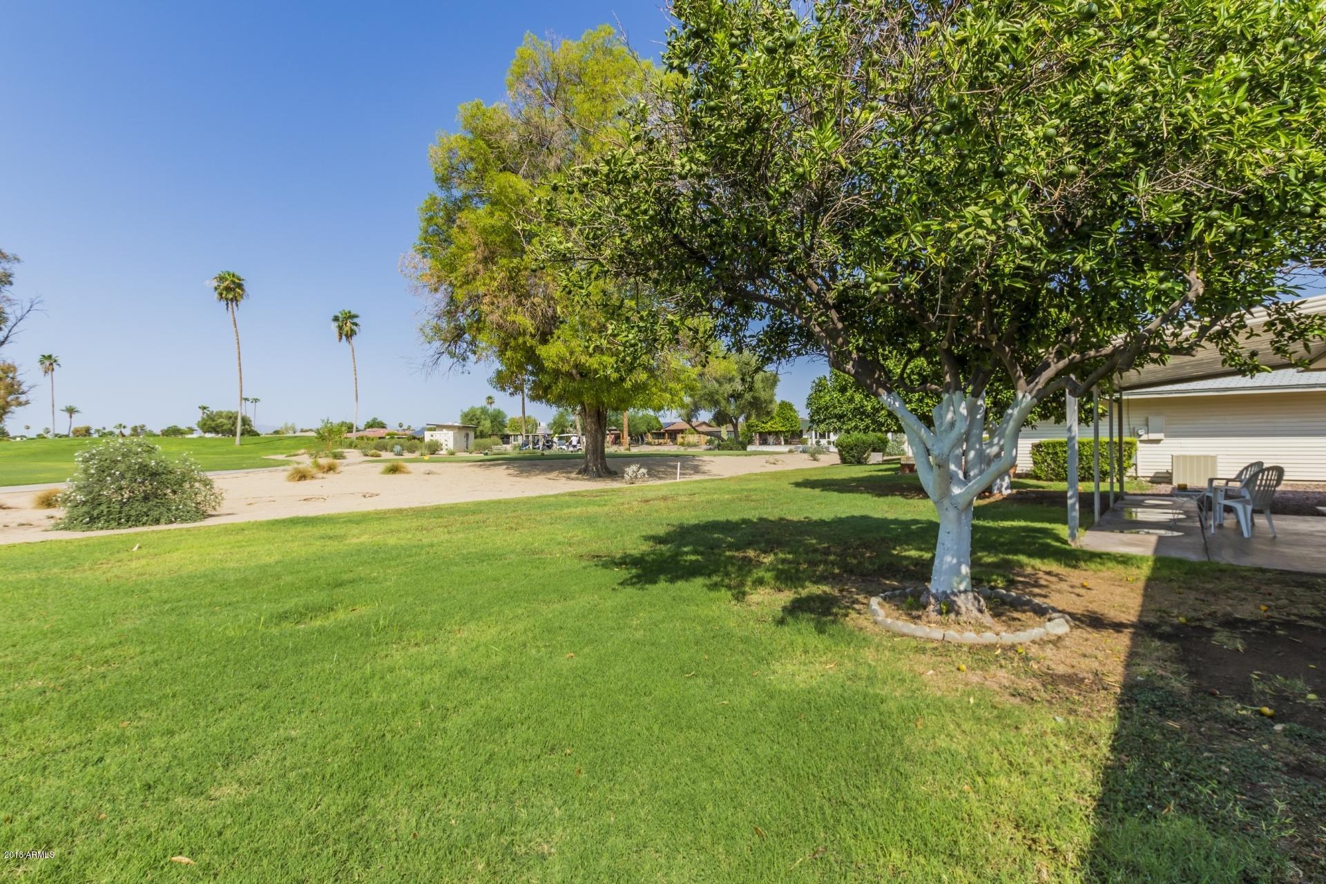 MLS 5801966 15230 N BOSWELL Boulevard, Sun City, AZ Sun City AZ Luxury