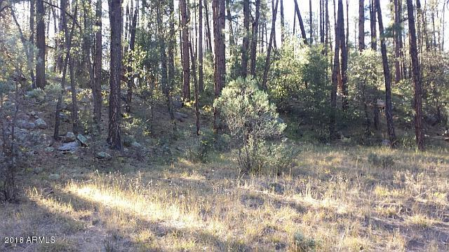 MLS 5807806 626 N Forest Service Road 199 --, Payson, AZ Payson Horse Property for Sale
