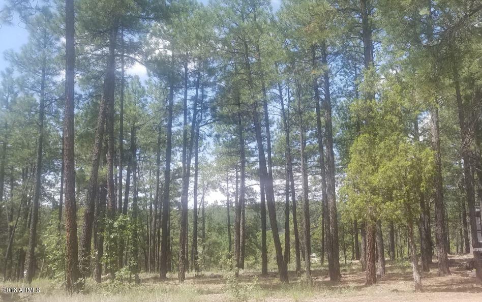 Photo of 345 W Lazy Pine Lane, Munds Park, AZ 86017