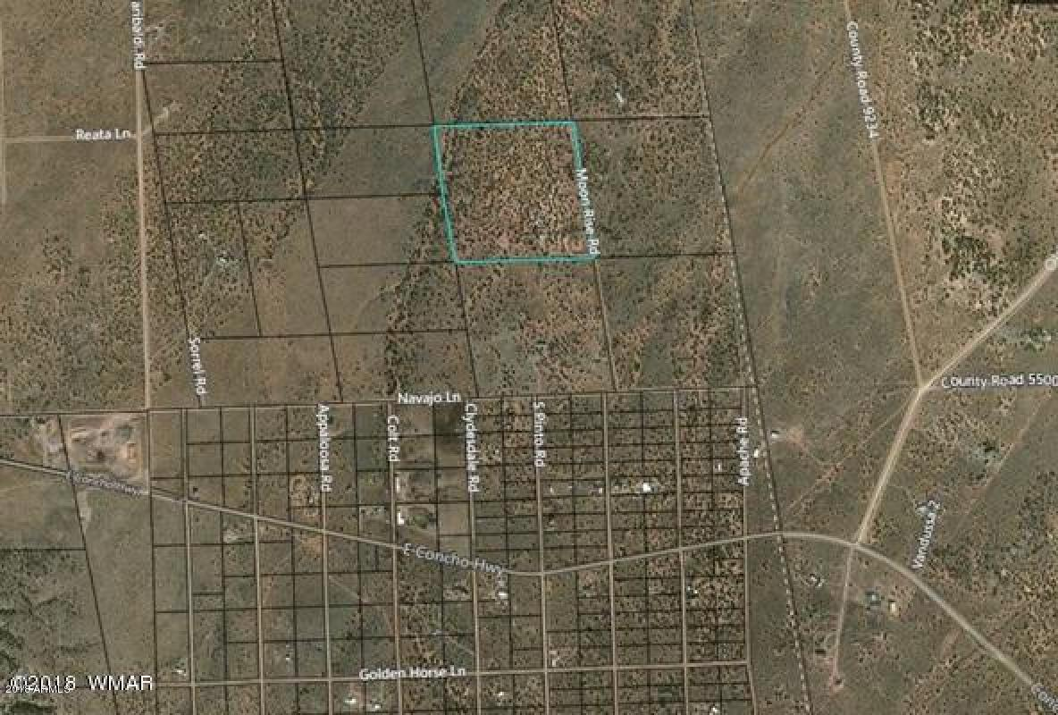 MLS 5813049 4674 MOON RISE Road, Snowflake, AZ Snowflake AZ Equestrian