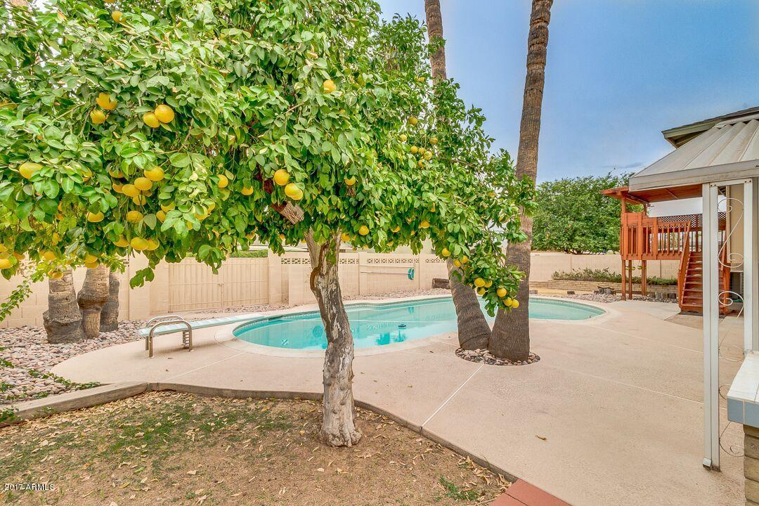 MLS 5816333 4425 S ELM Street, Tempe, AZ 85282 Tempe AZ Tempe Gardens