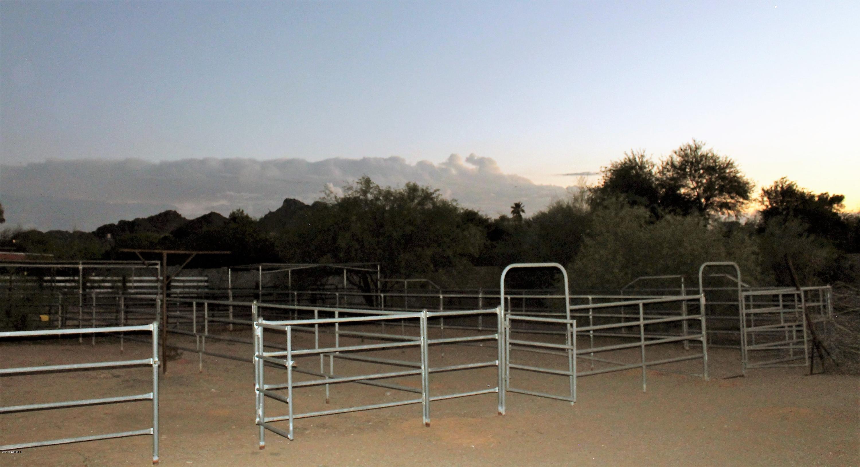 MLS 5768836 10250 N 39TH Street, Phoenix, AZ 85028 Phoenix AZ Equestrian