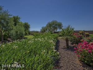 29254 N 130TH GLEN, PEORIA, AZ 85383  Photo 3