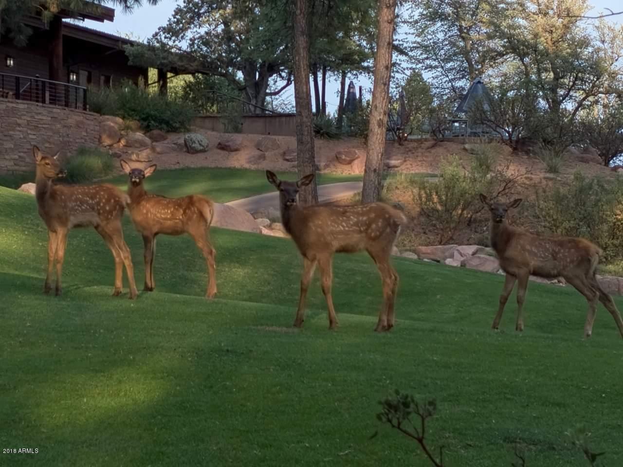 MLS 5716143 2519 E SCARLET BUGLER Circle, Payson, AZ Payson AZ Golf