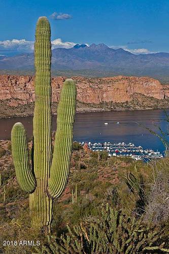 MLS 5826127 9848 N DESERT ROSE Drive, Fountain Hills, AZ 85268 Fountain Hills AZ Eagle Mountain
