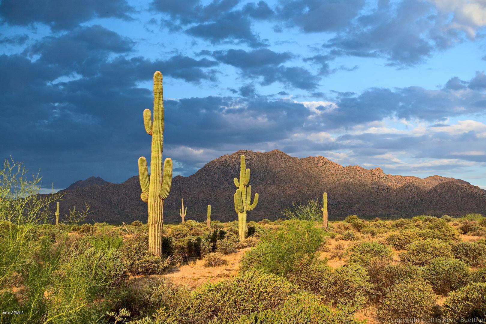 13806 E Windstone Trail Scottsdale, AZ 85262 - MLS #: 5826481