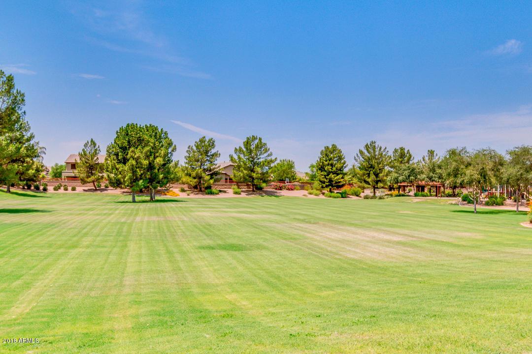 MLS 5832156 19049 E CATTLE Drive, Queen Creek, AZ 85142 Cortina