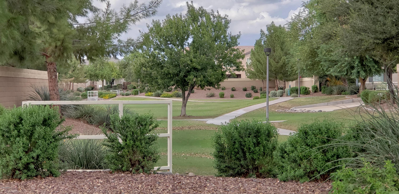 MLS 5831375 13603 W CATALINA Drive, Avondale, AZ 85392 Avondale AZ Luxury