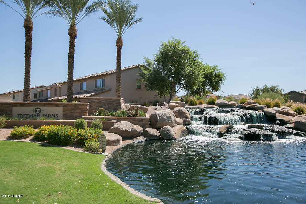 MLS 5835120 2465 E PRESCOTT Street, Gilbert, AZ 85298 Gilbert AZ Freeman Farms