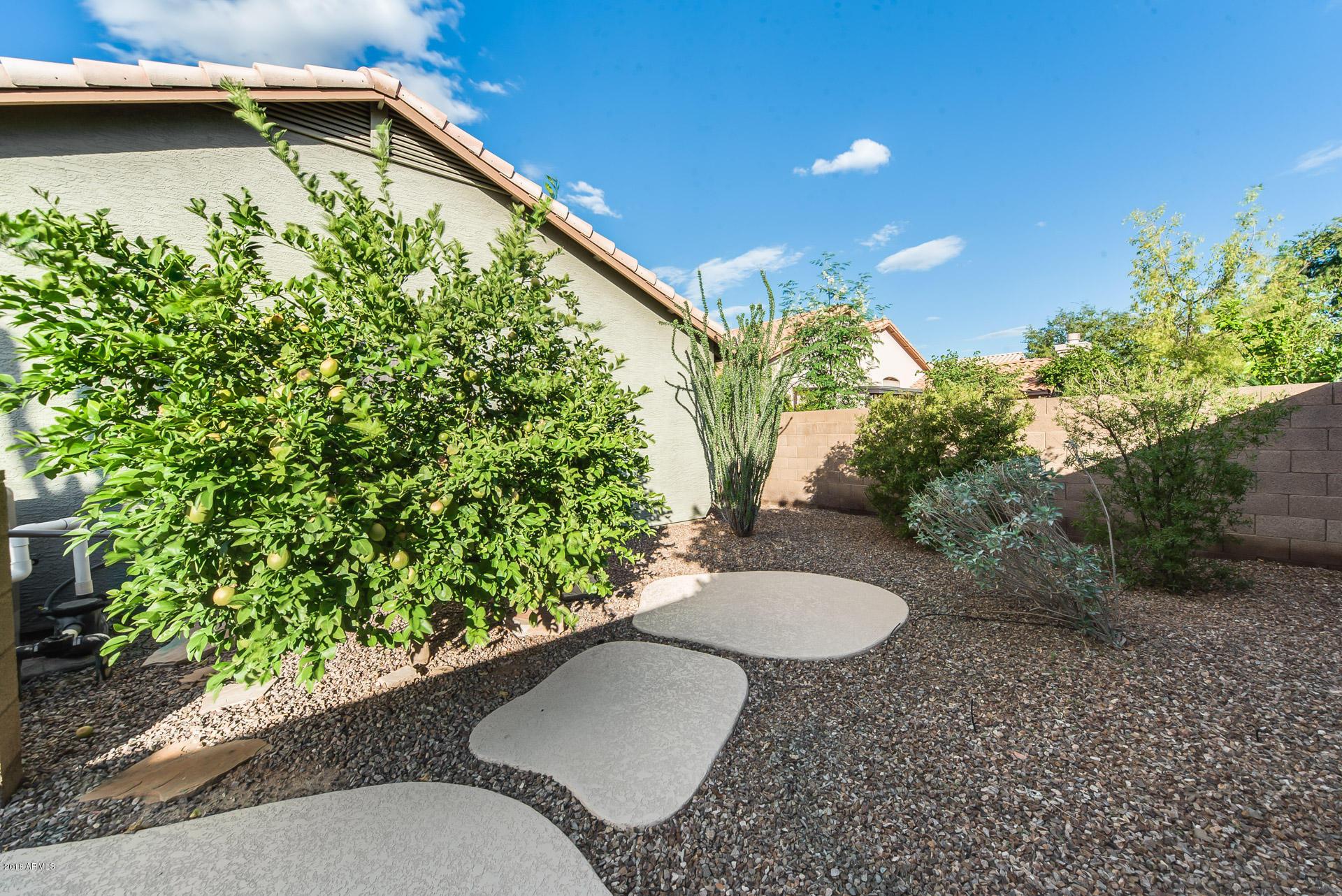 MLS 5835196 541 W MONTE Avenue, Mesa, AZ 85210 Mesa AZ West Mesa