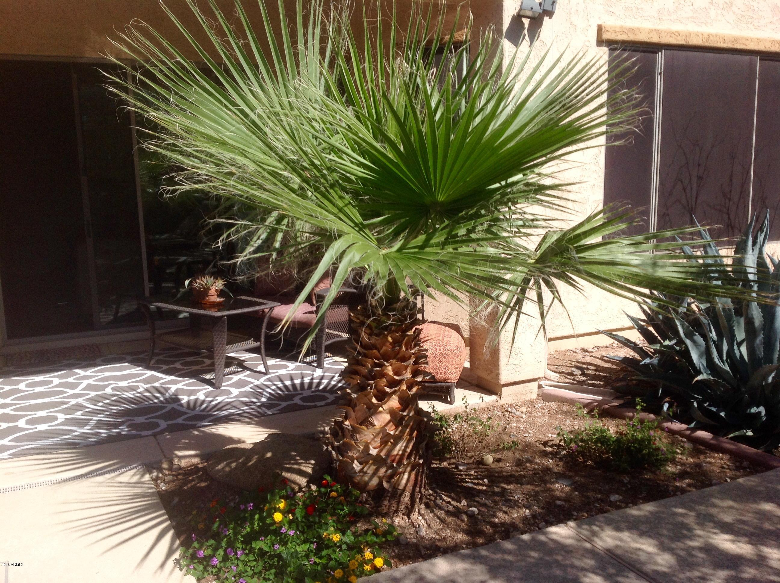 MLS 5837775 1519 W CALLE DE POMPAS --, Phoenix, AZ 85085 Phoenix AZ Sonoran Foothills