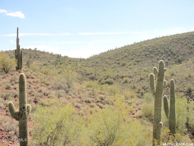 Photo of N Cow Creek Road, Morristown, AZ 85342