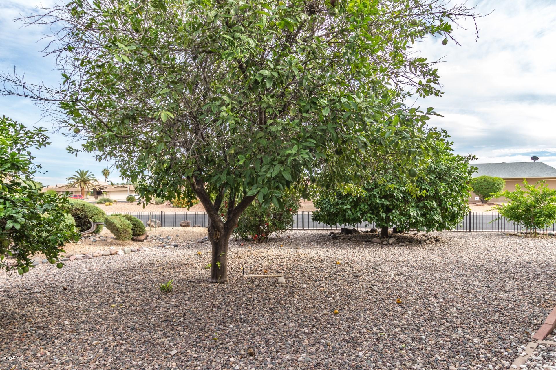 MLS 5842074 9128 W HUTTON Drive, Sun City, AZ Sun City AZ Private Pool