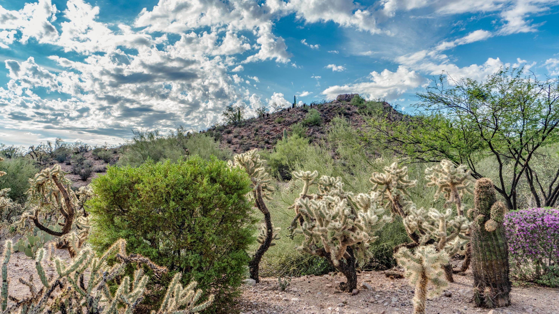MLS 5840230 5109 S DESERT WILLOW Drive, Gold Canyon, AZ 85118 Gold Canyon AZ Mountainbrook Village