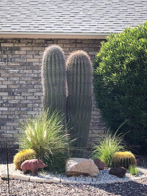 MLS 5840432 13039 W CASTLEBAR Drive, Sun City West, AZ 85375 Sun City West AZ Three Bedroom