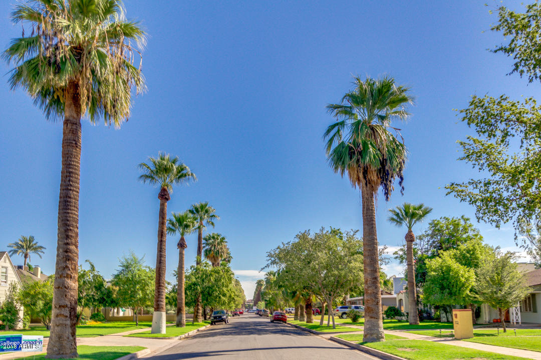 MLS 5840857 1141 W LYNWOOD Street, Phoenix, AZ 85007 Phoenix AZ F.Q. Story