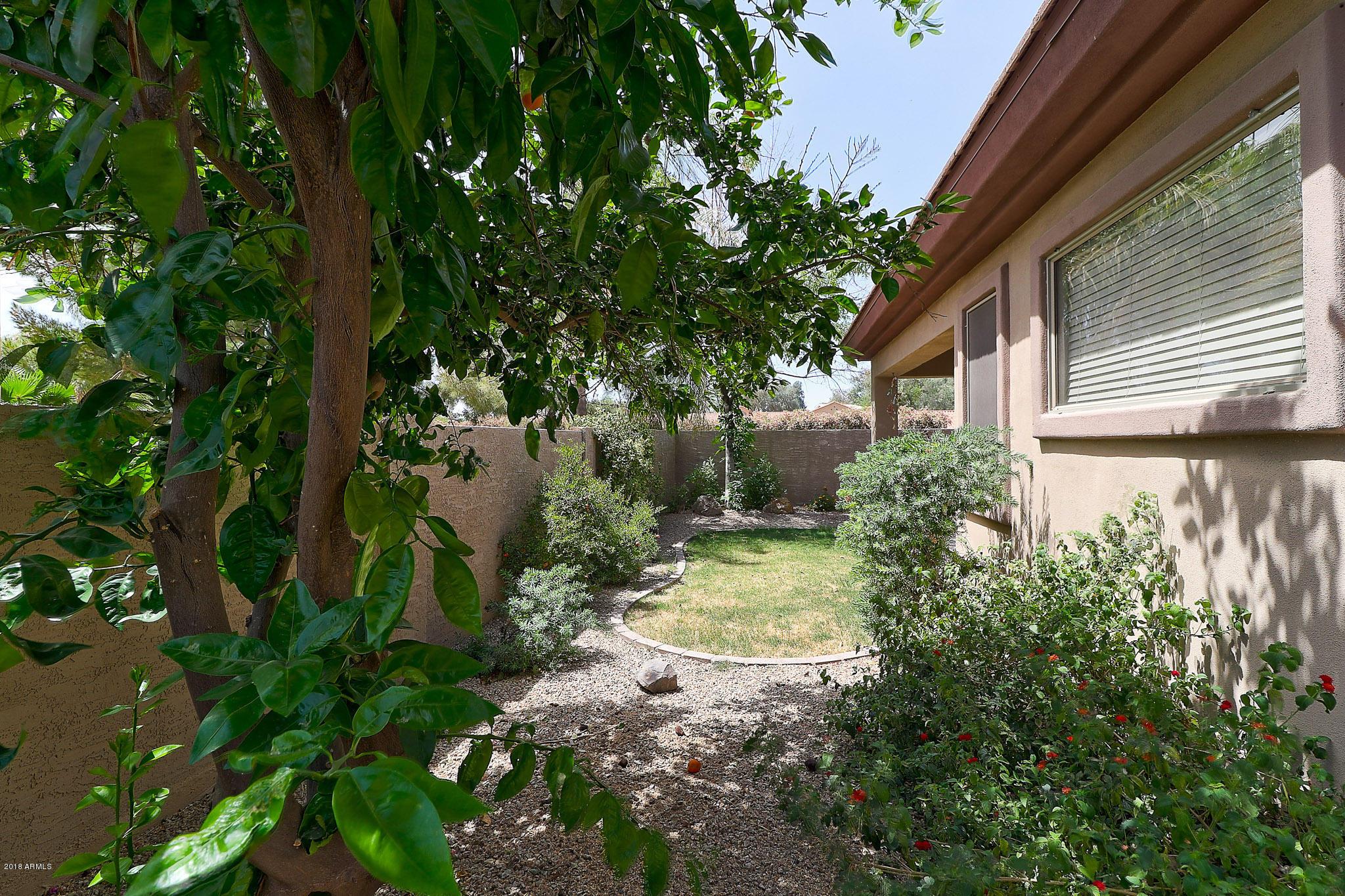 MLS 5877453 2014 W OLIVE Way, Chandler, AZ 85248 Montefino Village