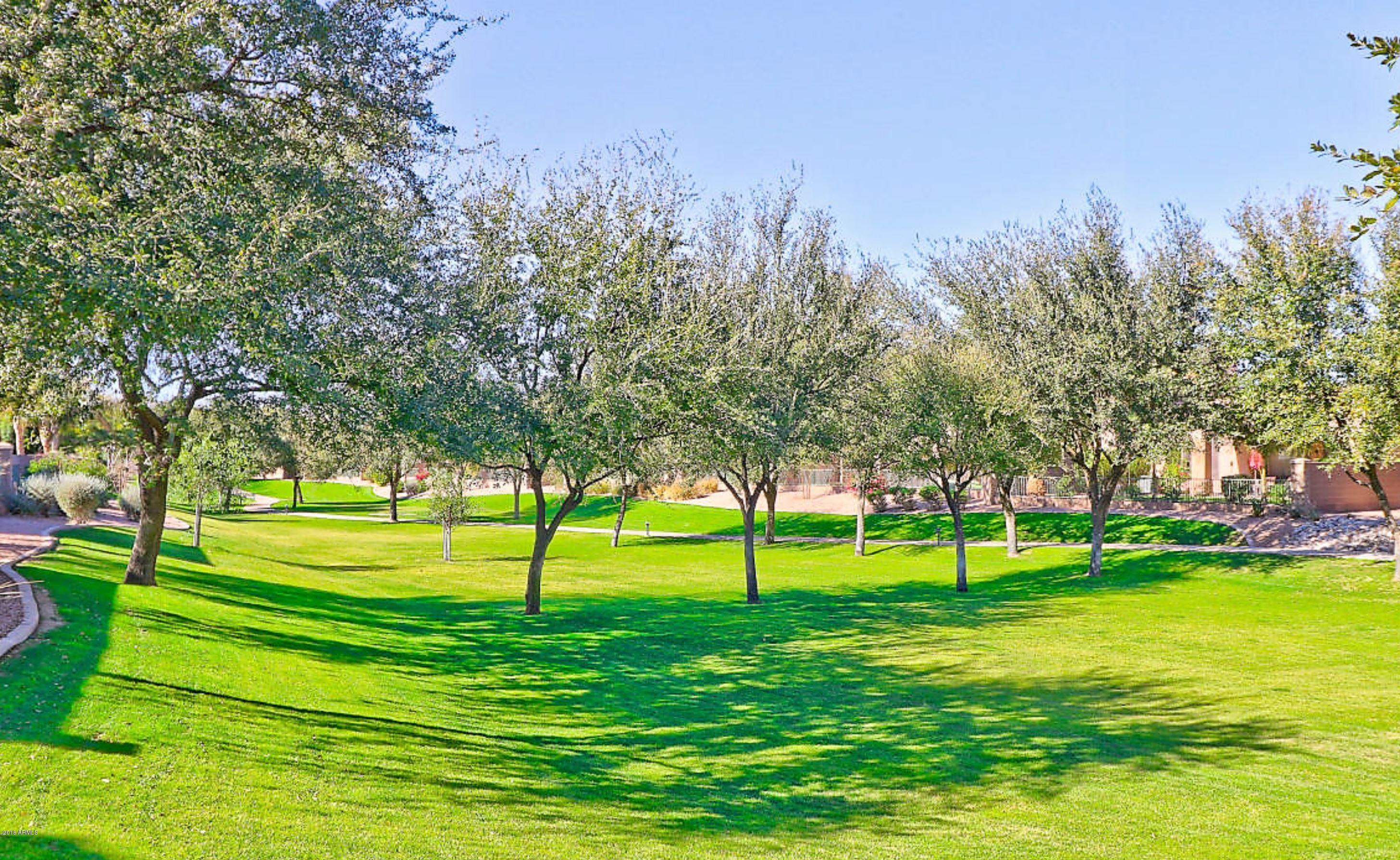 MLS 5847099 1387 W MARLIN Drive Building 1900, Chandler, AZ 85286 Community Pools