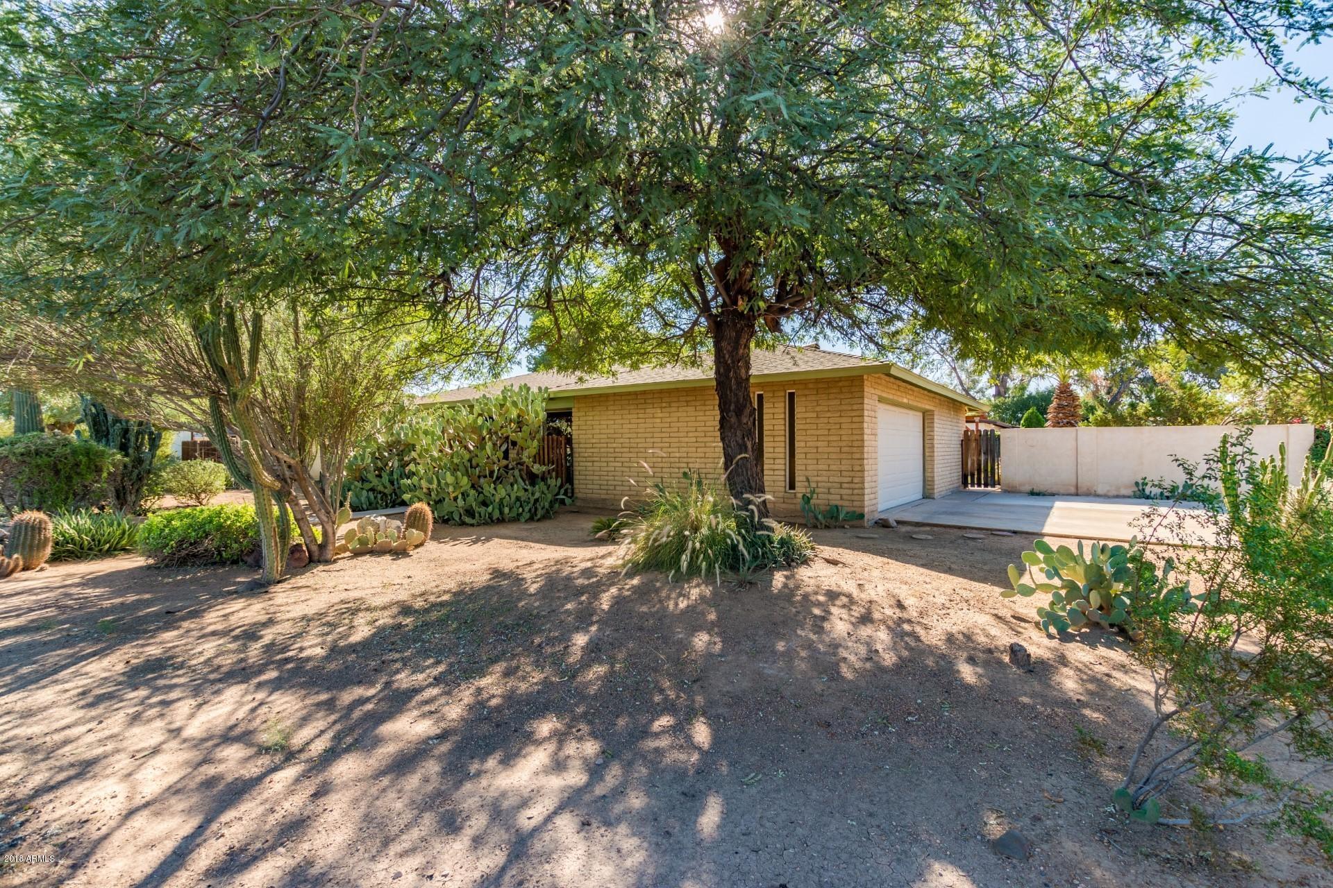 Photo of 303 W ORCHID Lane, Chandler, AZ 85225