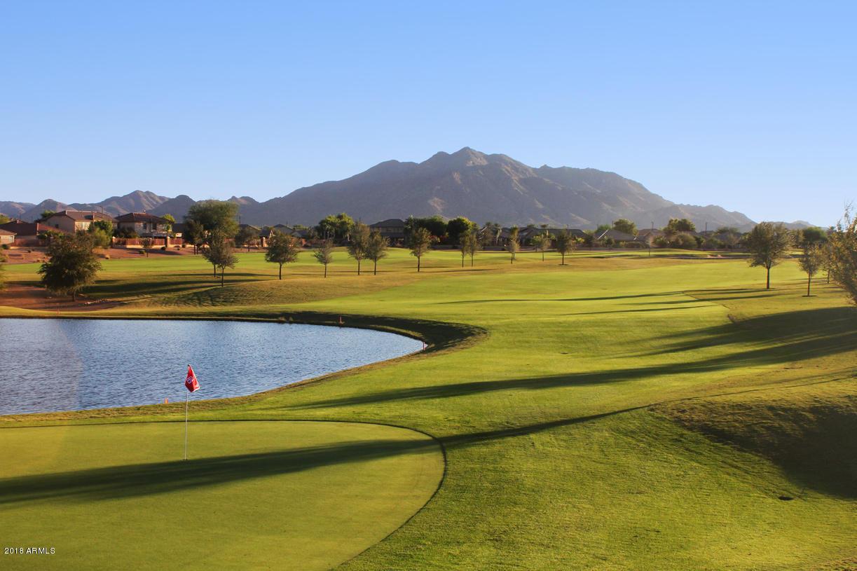 MLS 5843505 6642 S TRIANA Lane, Gilbert, AZ Gilbert AZ Golf Newly Built