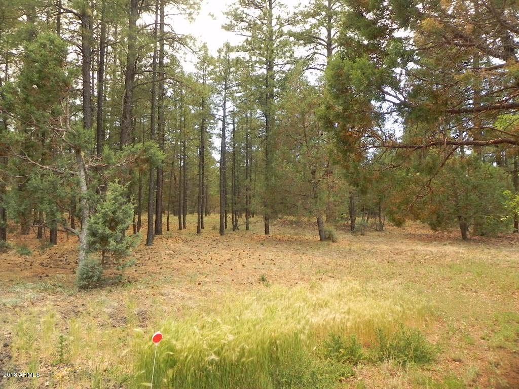 MLS 5844502 4441 HILLTOP Drive, Lakeside, AZ Lakeside AZ Equestrian