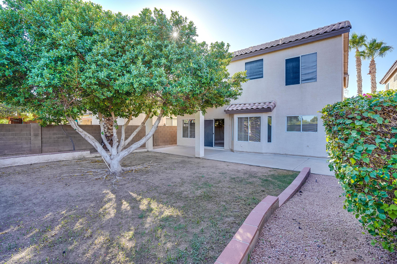 MLS 5845912 237 N KENNETH Place, Chandler, AZ 85226 Chandler AZ Wild Tree