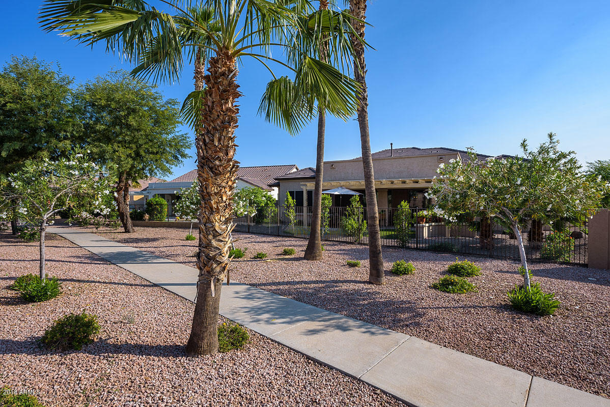 MLS 5846644 2136 N 164TH Drive, Goodyear, AZ 85395 Goodyear AZ Gated