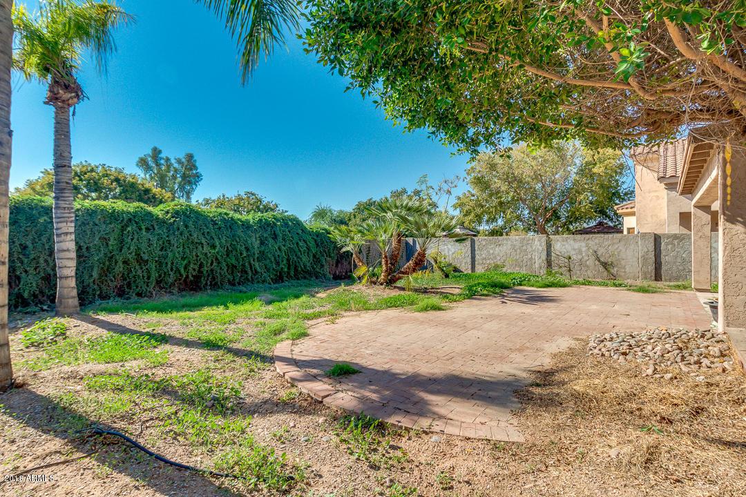 MLS 5846763 779 E STOTTLER Drive, Gilbert, AZ 85296 Gilbert AZ Neely Farms
