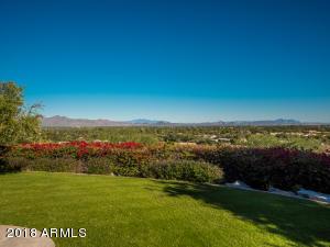 Backyard views