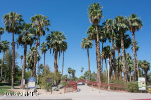 Encanto Park 1