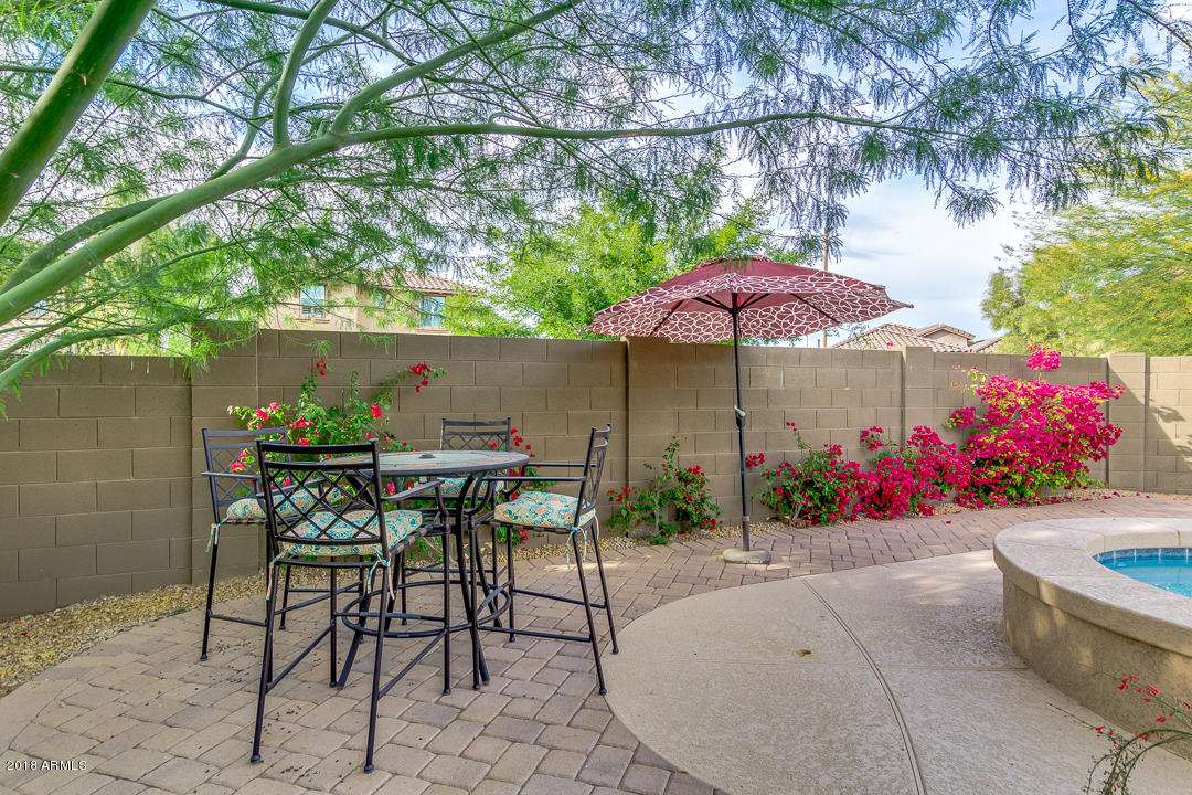 3605 E CAT BALUE Drive Phoenix, AZ 85050 - MLS #: 5851274