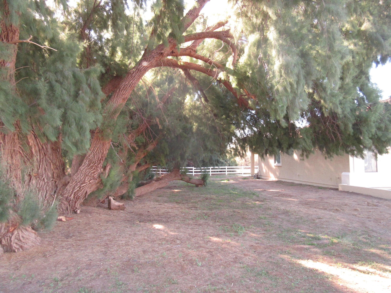 10214 S 279 Avenue Buckeye, AZ 85326 - MLS #: 5851655
