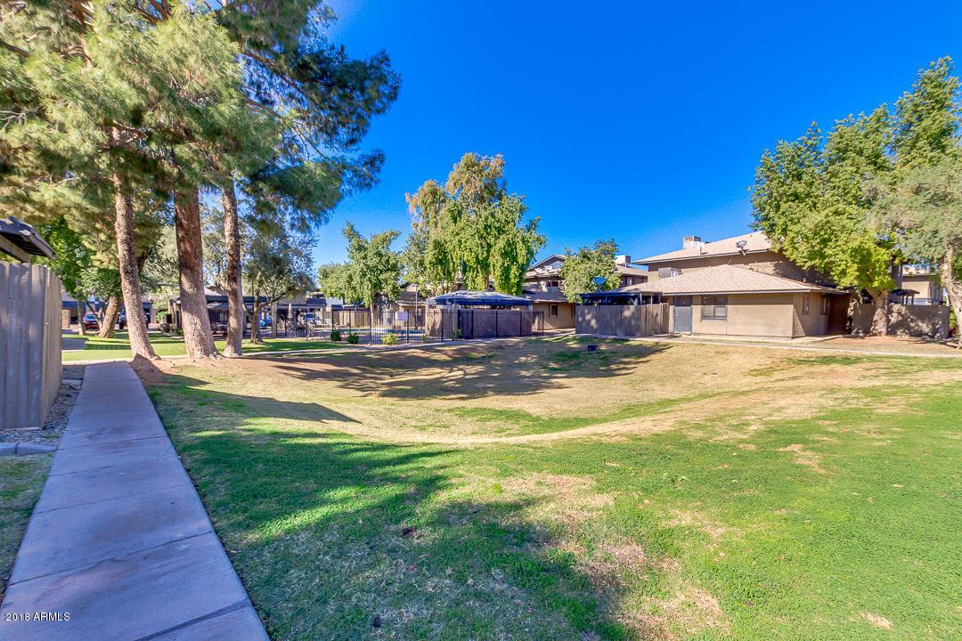 MLS 5852896 286 W PALOMINO Drive Unit 19, Chandler, AZ Chandler AZ Community Pool