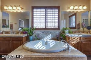 Master Bathroom III -