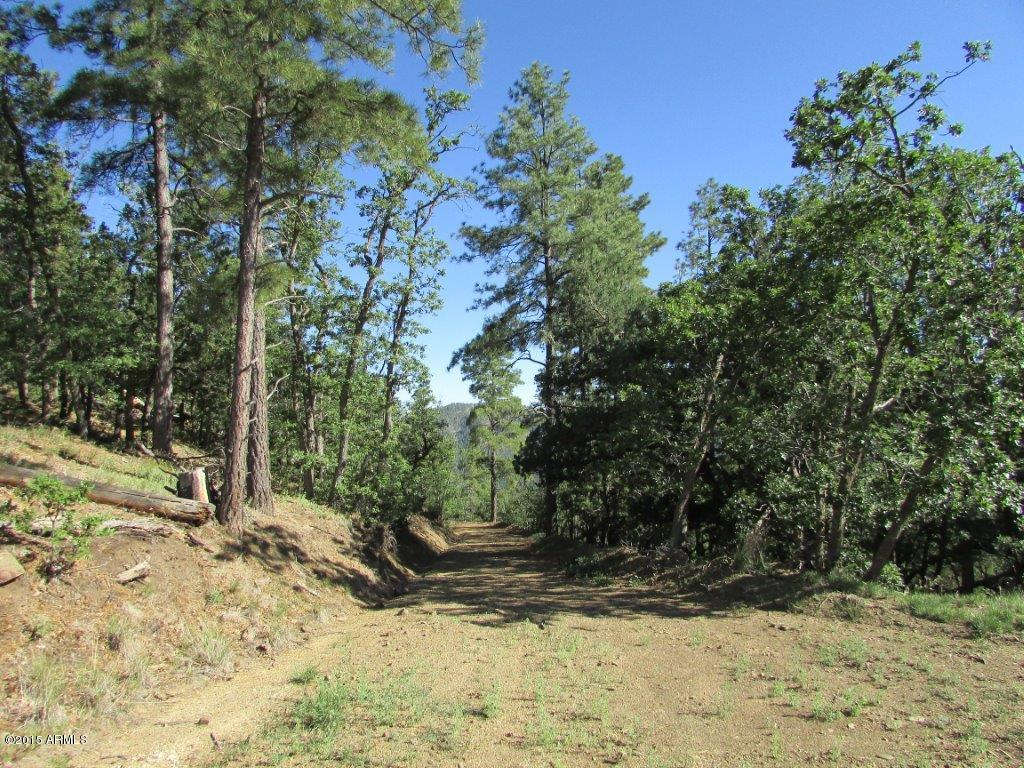 4XXX E BALD MOUNTAIN Road Prescott, AZ 86303 - MLS #: 5853909