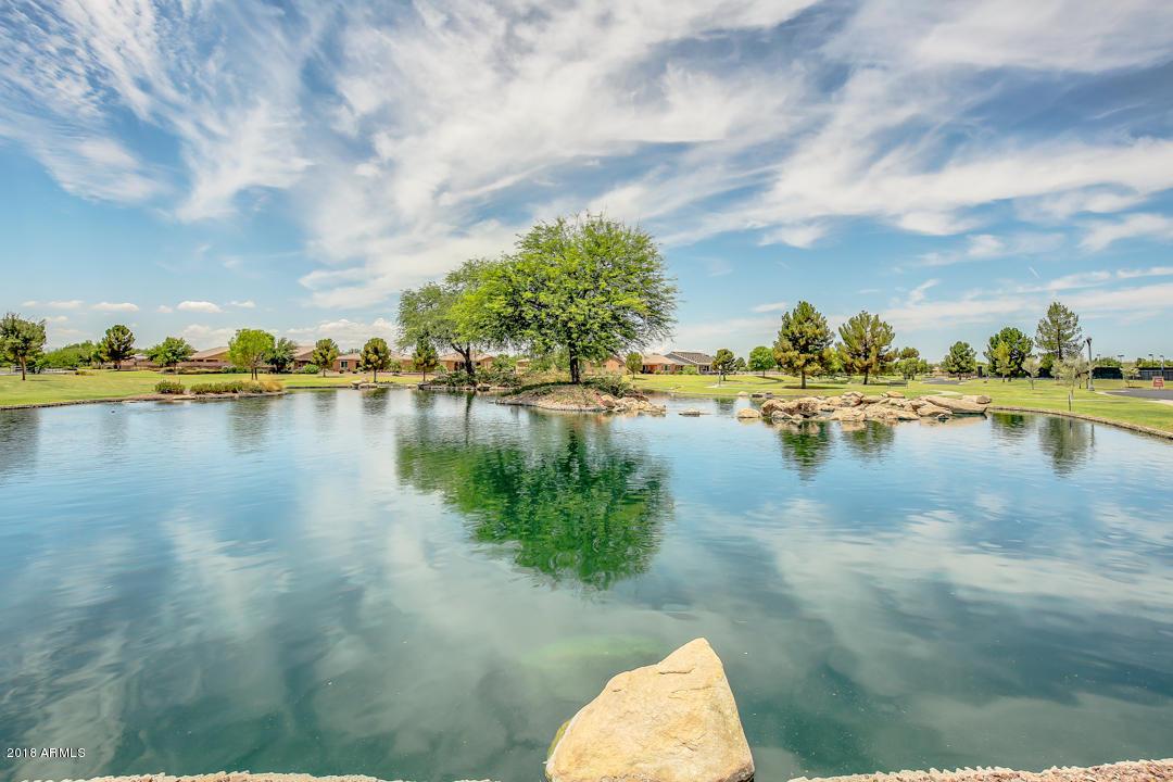 MLS 5854899 42775 W DARTER Drive, Maricopa, AZ Maricopa AZ Adult Community