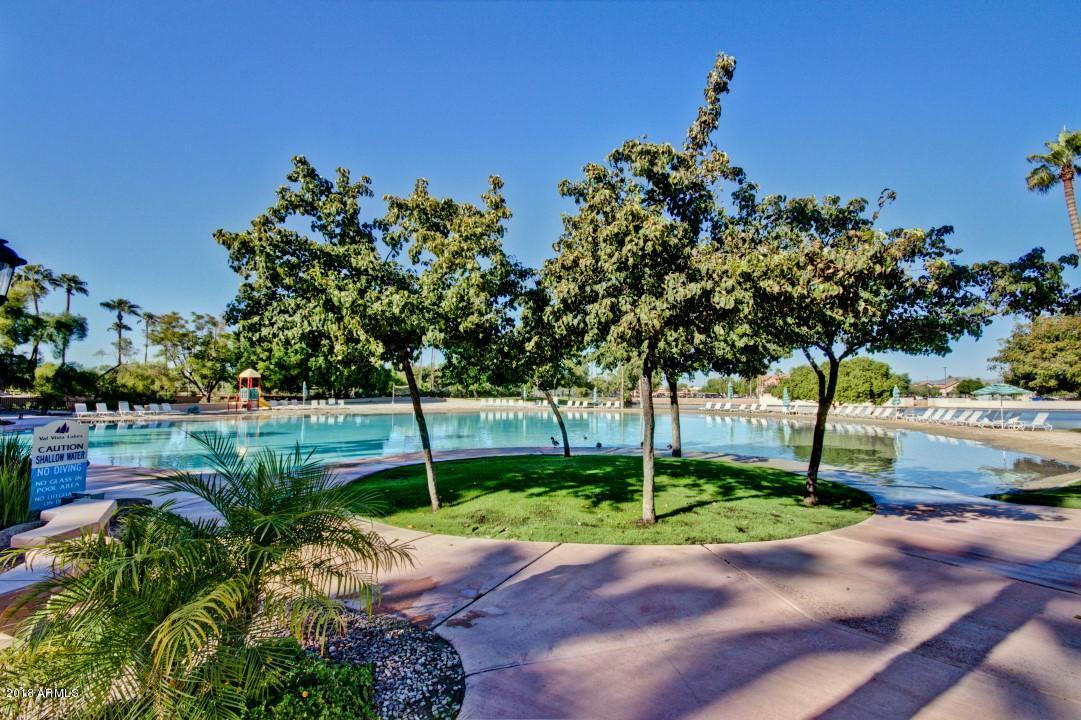 MLS 5852673 1826 E Cascade Drive, Gilbert, AZ Gilbert AZ Waterfront