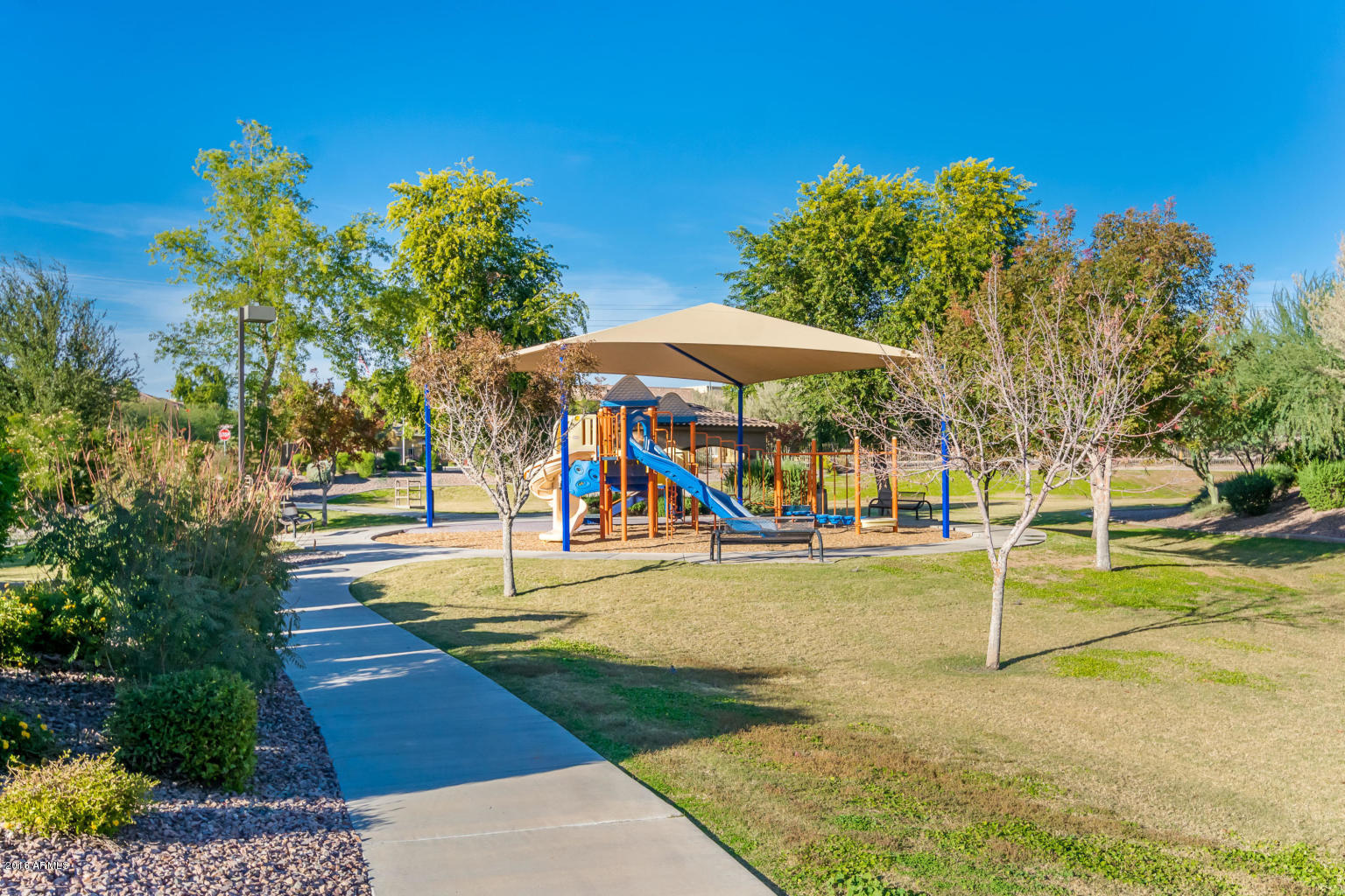 MLS 5856126 1921 W SWAN Drive, Chandler, AZ 85286 Community Pool
