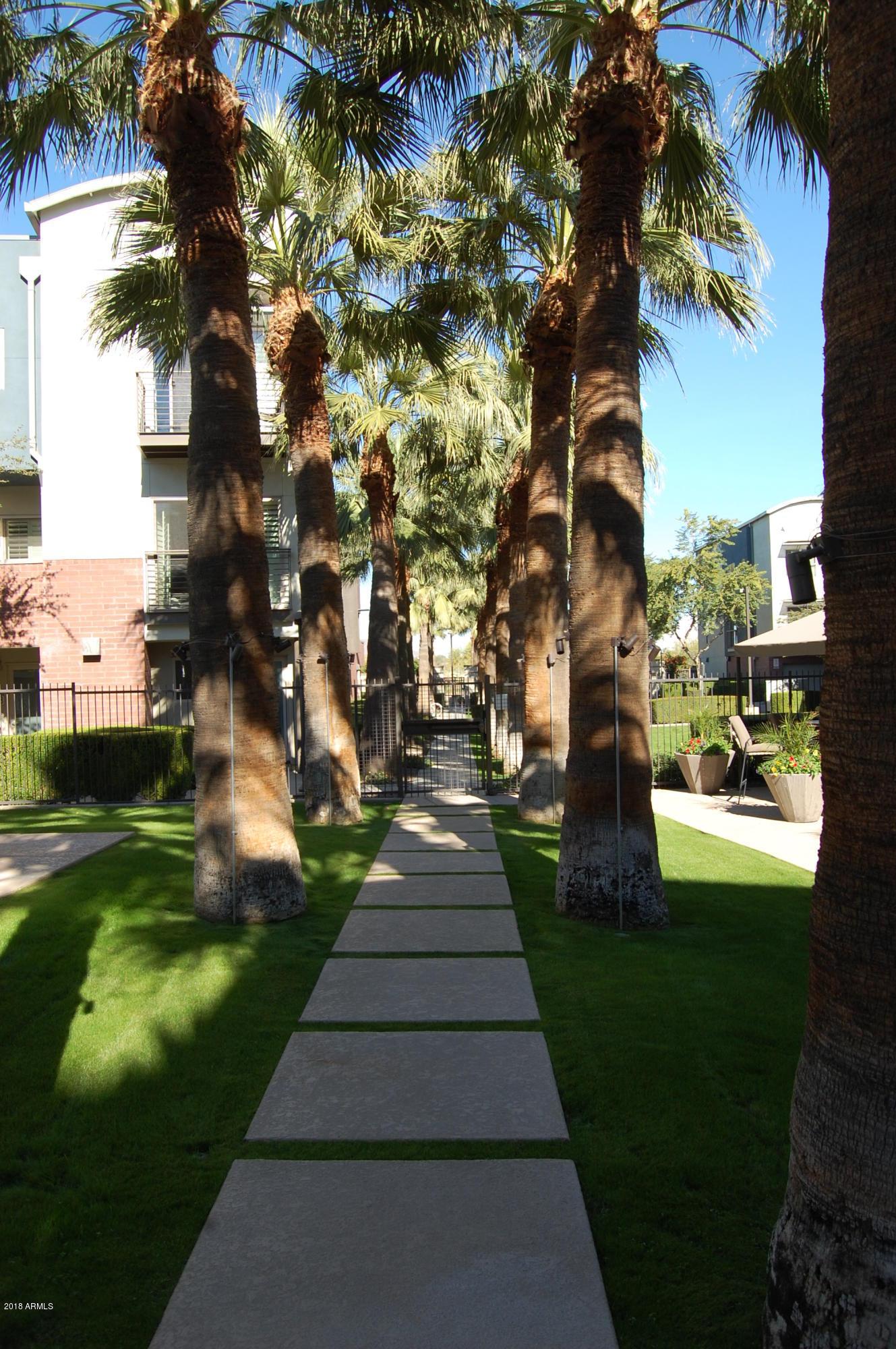 MLS 5857569 526 W 1ST Street Unit 102, Tempe, AZ Tempe AZ Luxury