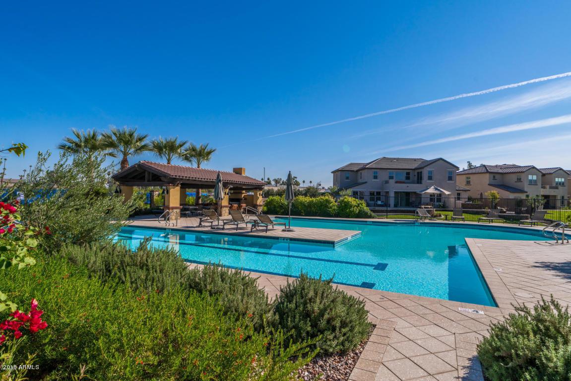 MLS 5857902 919 W YELLOWSTONE Way, Chandler, AZ Community Pool