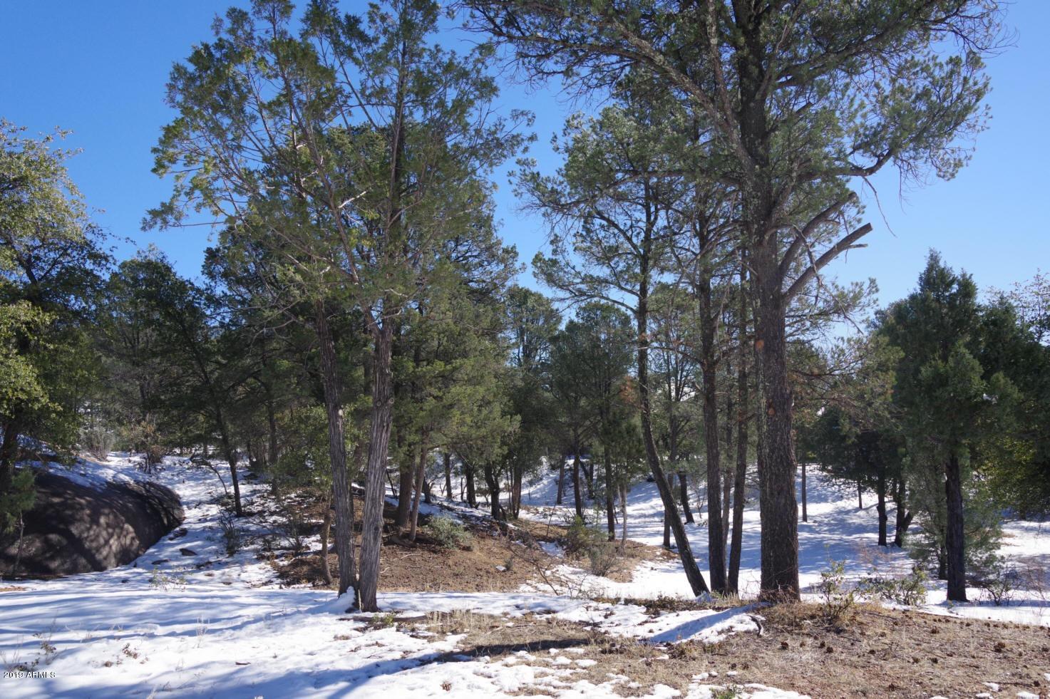 MLS 5775127 1411 E GRAHAM RANCH Trail, Payson, AZ Payson AZ Equestrian