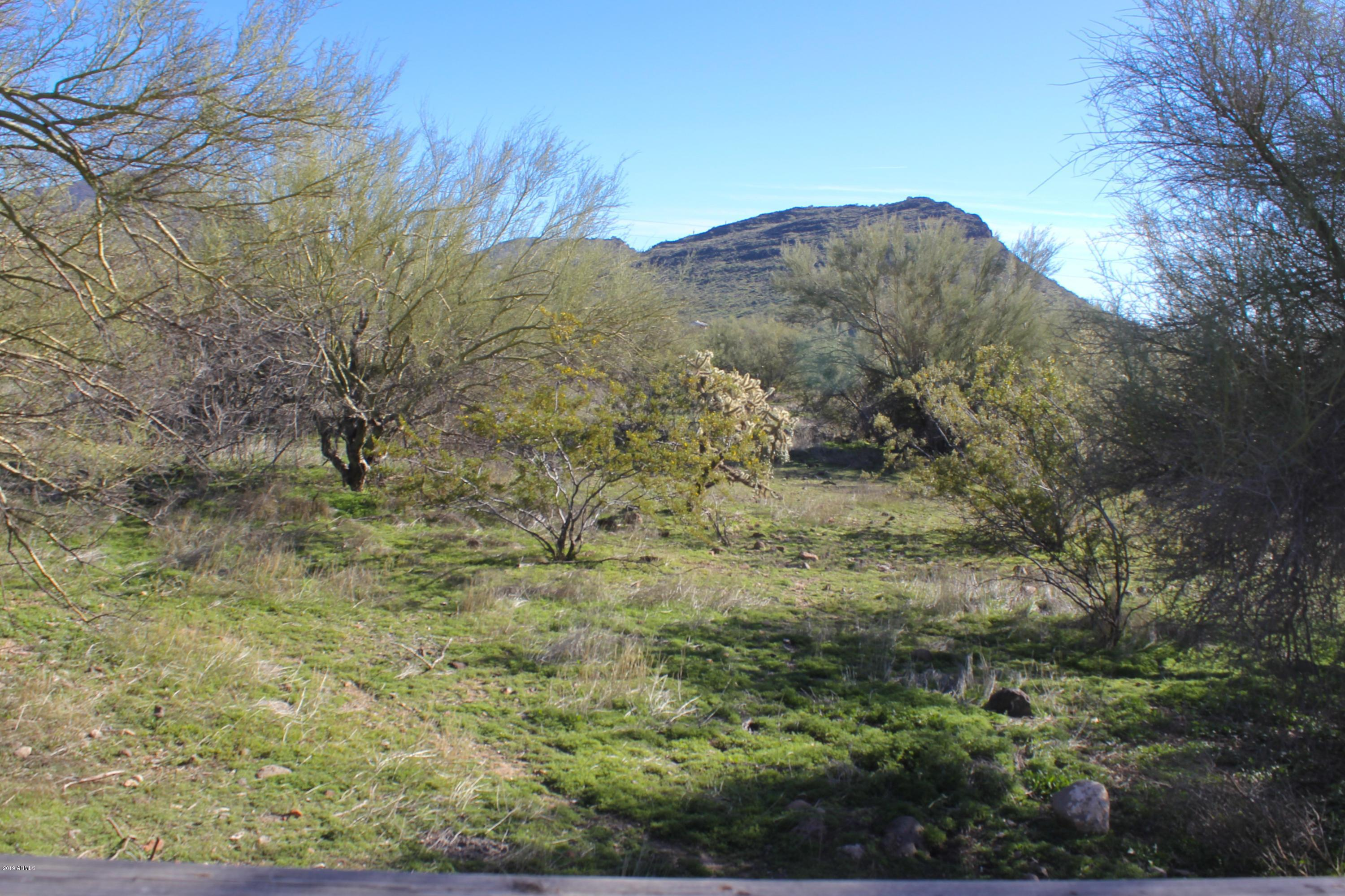 MLS 5824505 230 E SABROSA Drive, New River, AZ New River AZ Equestrian