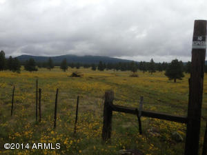 0 (Lot 07) S Garland Prairie Road Williams, AZ 86046