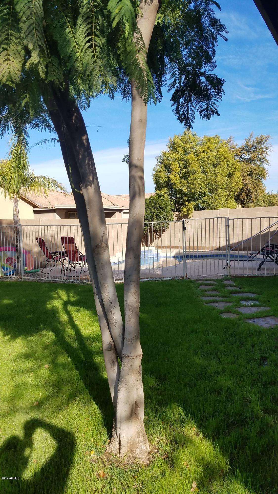 MLS 5867578 3214 S 103rd Drive, Tolleson, AZ 85353 Tolleson AZ Private Pool